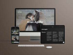 Arien Aguilar MockUp
